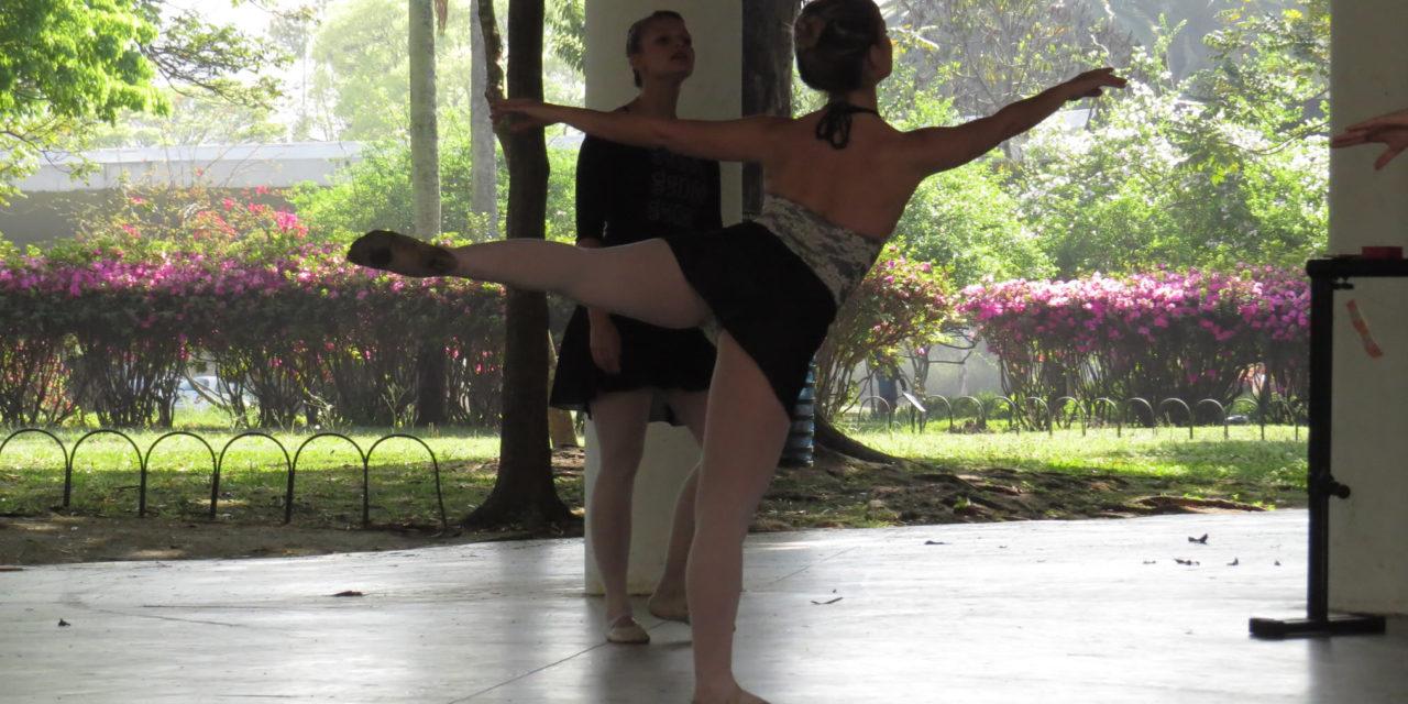As posições perfeitas dos braços no ballet