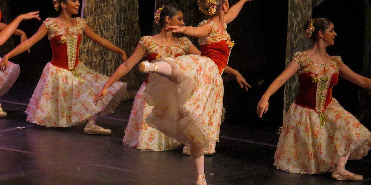 bc78aee971 Passos do Ballet