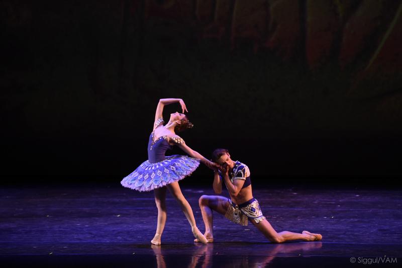 12 Características dos Ballets de Petipá